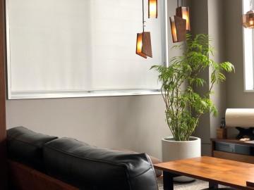 家具 富山 無垢材 観葉植物